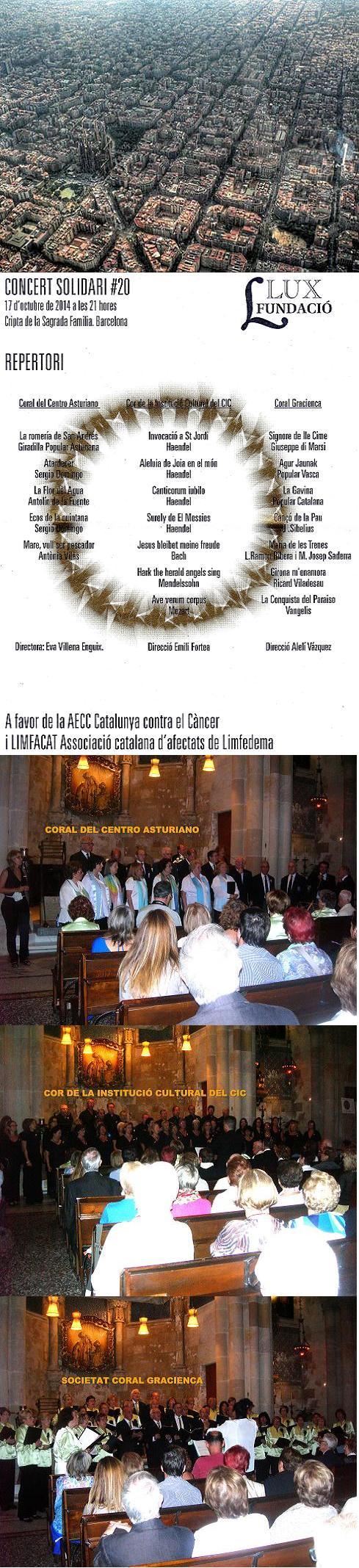 20141018230952-sgda.familia-concierto-solidario17-10-14.jpg
